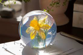 100 Flannel Flower Glass Floral Paperweights That Will Give You An Early Taste Of