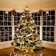 Christmas Tree 10ft by Photography Backdrop Big Christmas Tree Photo Background Sale