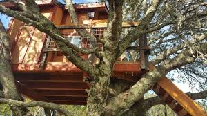 Backyard Treehouse For Kids - Kids Tree Houses For Sale. - YouTube 10 Fun Playgrounds And Treehouses For Your Backyard Munamommy Best 25 Treehouse Kids Ideas On Pinterest Plans Simple Tree House How To Build A Magician Builds Epic In Youtube Two Story Fort Stauffer Woodworking For Kids Ideas Tree House Diy With Zip Line Hammock Habitat Photo 9 Of In Surreal Houses That Will Make Lovely Design Awesome 3d Model Free Deluxe