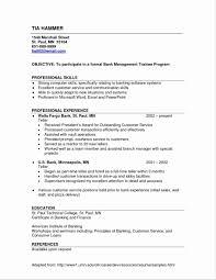 Lead Teller Resume Examples Fresh Entry Level Bank Of