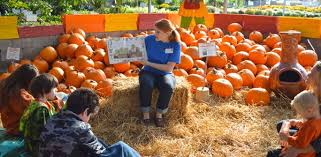 Pumpkin Patches Near Dallas Tx 2015 by Fall Festivals And Pumpkin Patches In Dfw