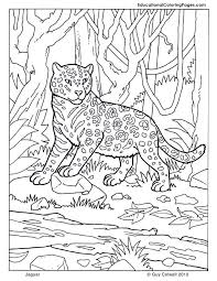 Tags Animal Coloring Pictures Free Pages For Kids Jaguar Panda To Color Of Animals Printable Book