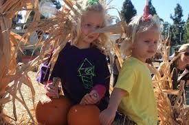 Pumpkin Patch Preschool Santa Rosa Ca by Juelfs U0027 Journey