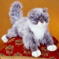 haired cats incredibly charming appealing hair cat animals