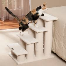 cat stairs pet stairs armarkat pet steps models b3001 and b4001