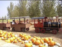 Pumpkin Patch Farm Temecula by Celebrate Fall At The Peltzer Pumpkin Patch