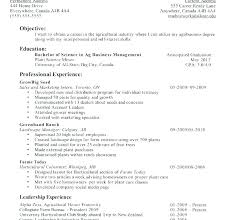 Resume Templates First Job Samples Printable Template Examples