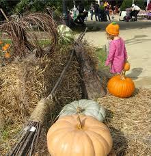 Spirit Halloween Broad Street Richmond Va by Upcoming Events