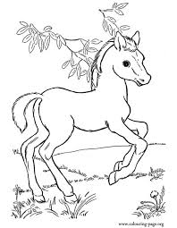 Cute Baby Horse Coloring Page For Kids Animal Pages Printables Free
