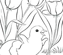 Printable Coloring Sheets For Spring Springtime Pages Toddlers Free Colouring S Adults