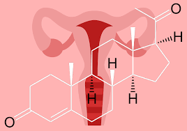 Uterine Lining Shedding Period by Everything You Need To Know About Low Progesterone And Why It