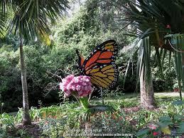 Florida Gardening forum Lego Garden Sculptures at McKee Botanical