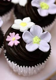 Chocolate Cupcakes And Spring Gum Paste Flowers