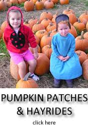 Fleitz Pumpkin Farm Groupon by Ohio Pumpkin Patches Hayrides Corn Mazes Fall Events