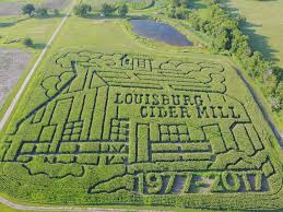 Pumpkin Patch Columbus 2015 by Louisburg Cider Mill Pumpkin Patch And Why We Love It All About