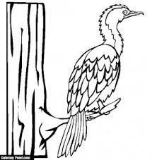 Nice Cormorants Bird Color Page For Kids