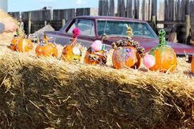 Spring Hope Pumpkin Festival Schedule by Molnar U0027s Pumpkin Festival At Molnar U0027s Taber Corn U0026 Pumpkin In Taber