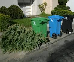 Gallant Ideas Tree Bag Home Depot Disposal Bags Regarding