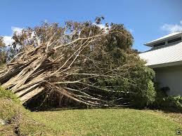South Seas Island Resort Post Irma Update