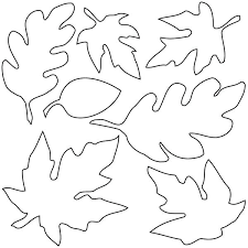 Leaf Coloring Pages Simple For Preschool Various Type Of Maple Page Sheet Tree With Leaves M Holly