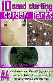 10 Seed Starting Garden Hacks