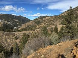 Jefferson County Co Christmas Tree Permits by Jefferson County Open Space Hiking To Healthy