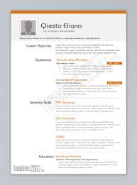 Programmer Resume Download Free Template