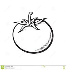Pommes De Terre Dessin Lovely Légumes 1a Vocabulaire Illustré