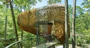 100 Tree House Studio Wood The Evans At Garvan Land Gardens Modus