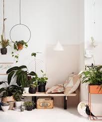 zimmerpflanzen arrangieren bild 6 living at home
