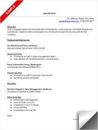 Sales Coordinator Resume Sample