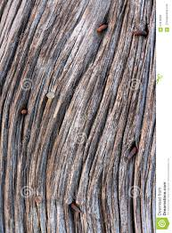 Old Barn Wood With Rusty Nails Stock Photo - Image: 67876330 Reclaimed Product List Old Barn Wood Google Search Textures Pinterest Barn Creating A Mason Jar Centerpiece From Old Wood Or Pallets Distressed Clapboard Background Stock Photo Picture Paneling Best House Design The Utestingcimedyeaoldbarnwoodplanks Amazoncom Cabinet This Simple Yet Striking Piece Christmas And New Year Backgroundfir Tree Branch On Free Images Vintage Grain Plank Floor Building Trunk For Sale Board Siding Lumber Bedroom Fniture Trellischicago Sign