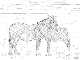 Click The Grants Plain Zebras Coloring Pages To View Printable