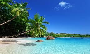 vacance air transat forfait air transat réservez vos vacances avec air transat