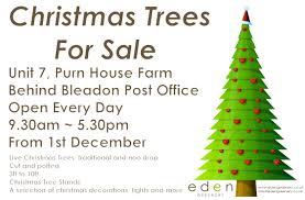 Christmas Tree Stand 10ft by A Contact Page For Eden Greenery And Christmas Trees