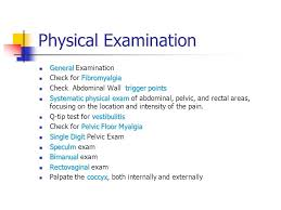 Pelvic Floor Tension Myalgia by Chronic Pelvic Pain In Gynecological Practice Ppt Download