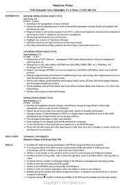 Best Operation Executive Resume Sample Operations Executive Resume ... Executive Resume Samples Australia Format Rumes By The Advertising Account Executive Resume Samples Koranstickenco It Templates Visualcv Prime Financial Cfo Example Job Examples 20 Best Free Downloads Portfolio Examples Board Of Directors Example For Cporate Or Nonprofit Magnificent Hr Manager Sample India For Your Civil Eeering Technician Valid Healthcare Hr Download