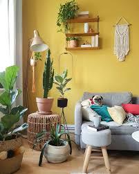 livingroom boho bohohome bohohomedecor plants
