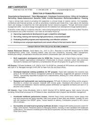 Business Development Manager Resume Awesome Sales Examples Inspirational Territory