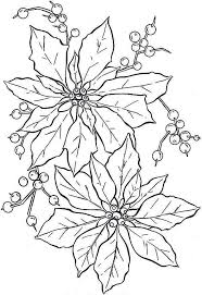 Beautiful Poinsettia Flower Coloring Page