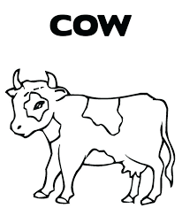 Cow Printable Coloring Pages Cute Page Free
