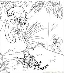 Zoo Animal Coloring Page 28