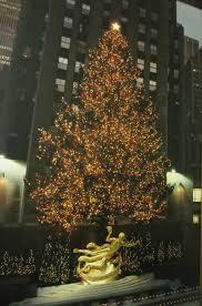 Rockefeller Center Christmas Tree Fun Facts by Villa Pauline Reisterstown Readers U0027 Blog