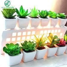 plantes pour bureau des plantes vertes en pot ou a suspendre plante verte au bureau