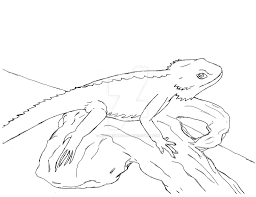 NIXawesomeART 0 Bearded Dragon By