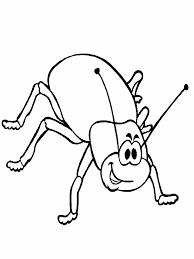 Beetle Animals Coloring Pages