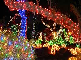 Frontgate Christmas Tree Lights Problems by Decorate Your Christmas Tree With Christmas Outdoor Tree Lights