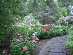 552 best GARDEN images on Pinterest