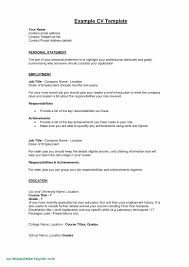 Resume Summary Examples Auditor New Sample Statements Awesome Fresh Resumes