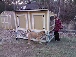 Perrydice Chicken Tractor | BackYard Chickens Amazoncom Softsided Carriers Travel Products Pet Supplies Walmartcom Cat Strollers Best 25 Dog Fniture Ideas On Pinterest Beds Sleeping Aspca Soft Crate Small Animal Masters In The Sky Mikki Senkarik Services Atlantic Hospital Wellness Center Chicken Breeds Ideal For Backyard Pets And Eggs Hgtv 3doors Foldable Portable Home Carrier Clipping Money John Paul Wipes Giveaway